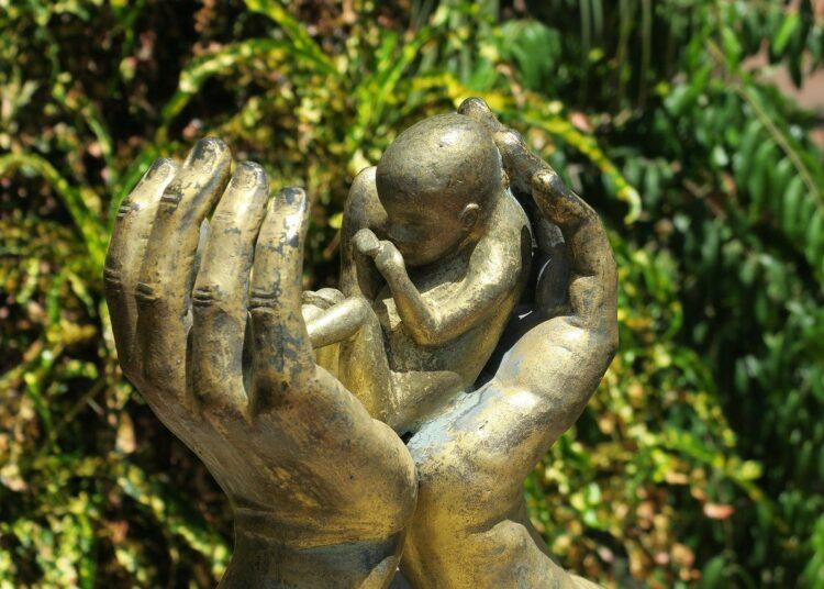 Голос женщин в защиту нерождённых младенцев и против абортивных вакцин